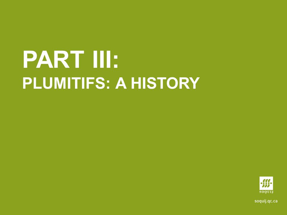 PART III: PLUMITIFS: A HISTORY