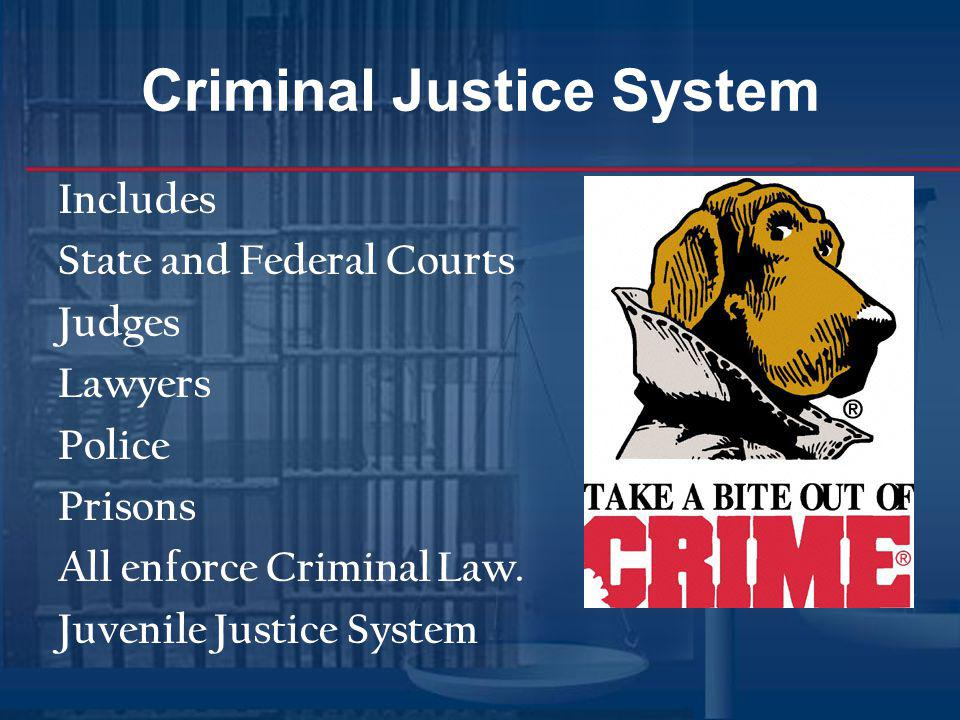 Types of Crimes States have penal code(written laws) 3 types of crimes Petty Offenses Parking illegally, minor traffic tickets, Disturbing the peace Trespassing Punishments; ticket, citation not arrested.