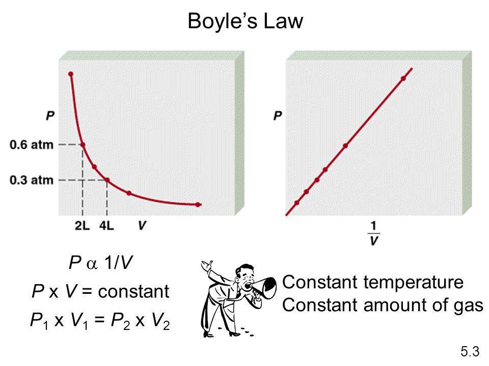 P 1/V P x V = constant P 1 x V 1 = P 2 x V 2 5.3 Boyles Law Constant temperature Constant amount of gas