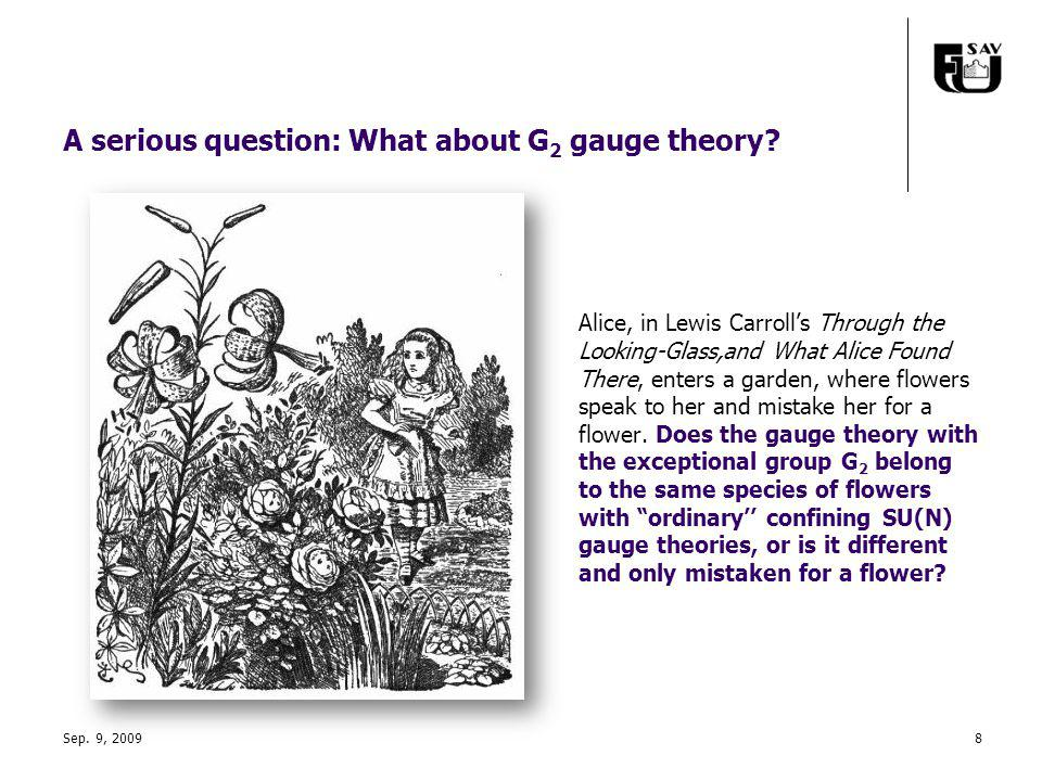 Sep. 9, 20098 A serious question: What about G 2 gauge theory.