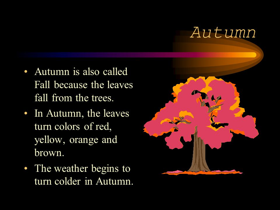 Autumn Autumn is also called Fall because the leaves fall from the trees. In Autumn, the leaves turn colors of red, yellow, orange and brown. The weat