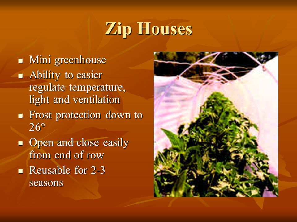 Zip Houses Mini greenhouse Mini greenhouse Ability to easier regulate temperature, light and ventilation Ability to easier regulate temperature, light