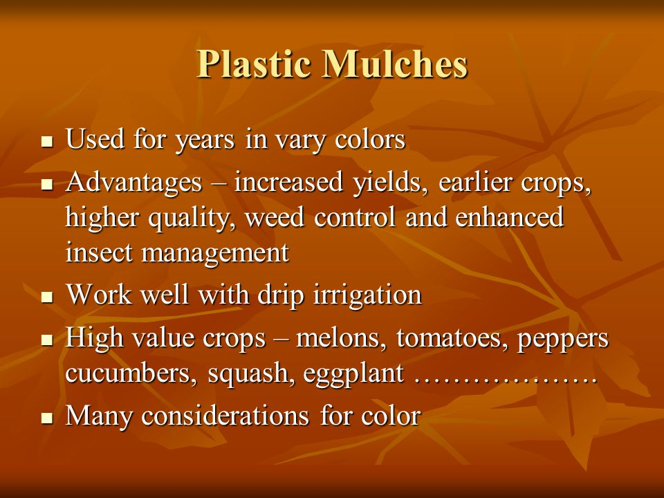 Plastic Mulches Used for years in vary colors Used for years in vary colors Advantages – increased yields, earlier crops, higher quality, weed control