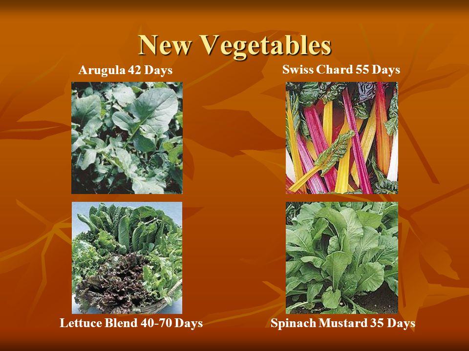 New Vegetables Arugula 42 Days Swiss Chard 55 Days Lettuce Blend 40-70 DaysSpinach Mustard 35 Days