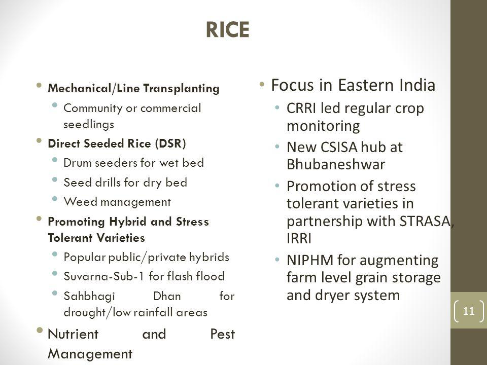 RICE Mechanical/Line Transplanting Community or commercial seedlings Direct Seeded Rice (DSR) Drum seeders for wet bed Seed drills for dry bed Weed management Promoting Hybrid and Stress Tolerant Varieties Popular public/private hybrids Suvarna-Sub-1 for flash flood Sahbhagi Dhan for drought/low rainfall areas Nutrient and Pest Management Focus in Eastern India CRRI led regular crop monitoring New CSISA hub at Bhubaneshwar Promotion of stress tolerant varieties in partnership with STRASA, IRRI NIPHM for augmenting farm level grain storage and dryer system 11