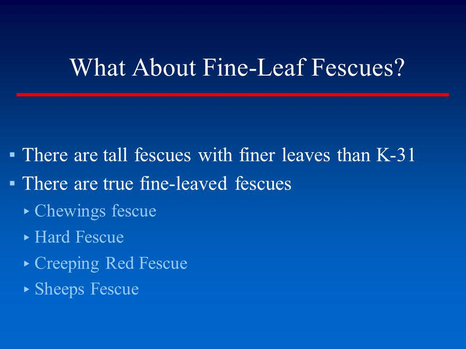 What About Fine-Leaf Fescues? There are tall fescues with finer leaves than K-31 There are true fine-leaved fescues Chewings fescue Hard Fescue Creepi