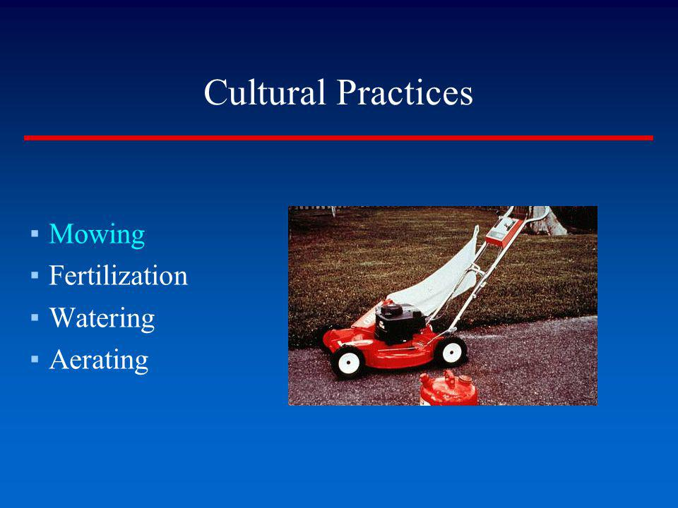 Cultural Practices Mowing Fertilization Watering Aerating