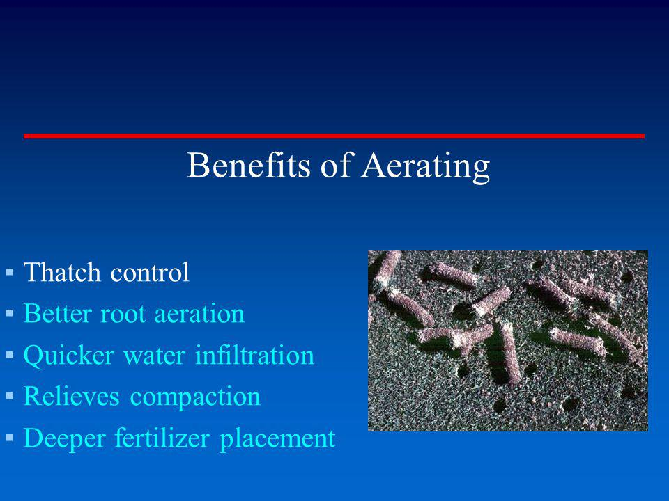 Benefits of Aerating Thatch control Better root aeration Quicker water infiltration Relieves compaction Deeper fertilizer placement