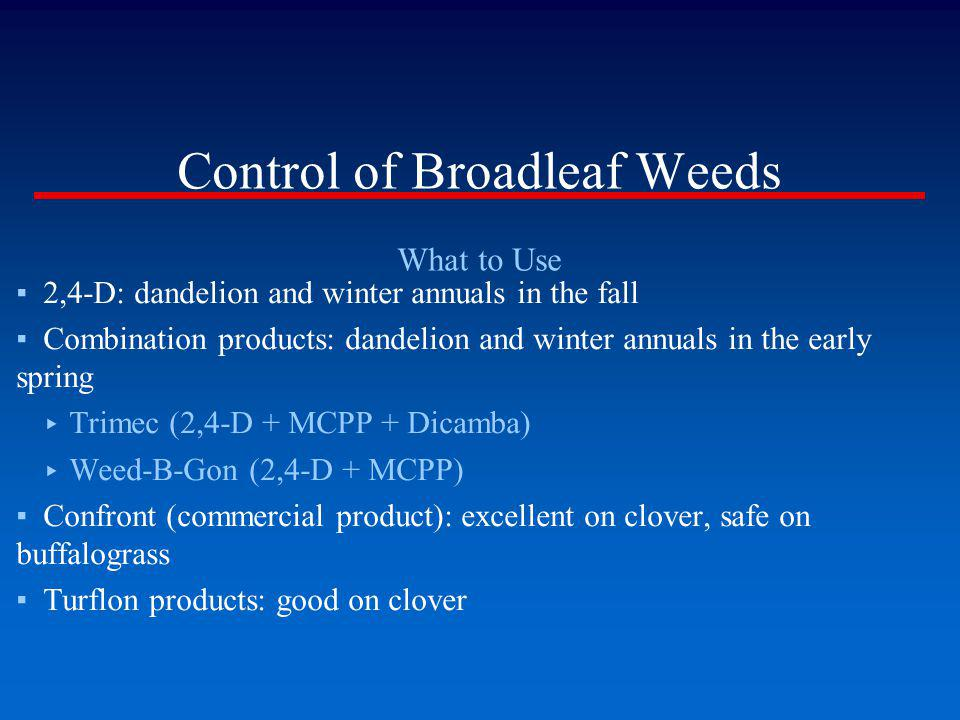 Control of Broadleaf Weeds What to Use 2,4-D: dandelion and winter annuals in the fall Combination products: dandelion and winter annuals in the early
