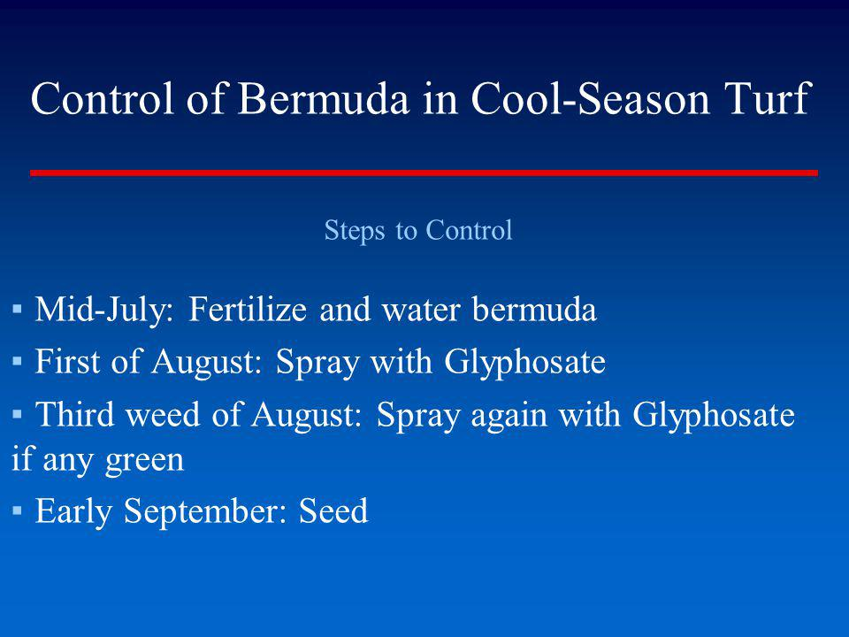 Control of Bermuda in Cool-Season Turf Steps to Control Mid-July: Fertilize and water bermuda First of August: Spray with Glyphosate Third weed of Aug