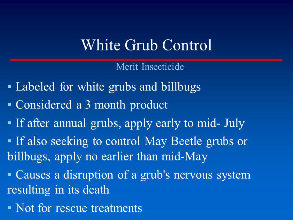 White Grub Control Merit Insecticide Labeled for white grubs and billbugs Considered a 3 month product If after annual grubs, apply early to mid- July