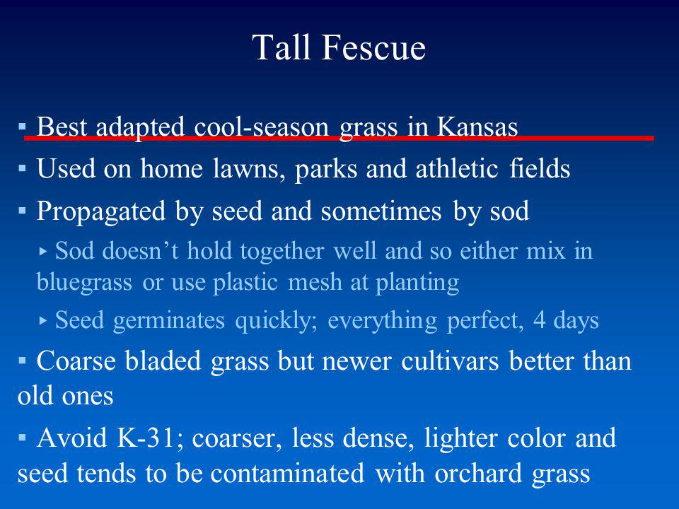Tall Fescue - Brown Patch Conditions Favoring Hot days and warm nights High nitrogen fertilization Wet leaf surfaces