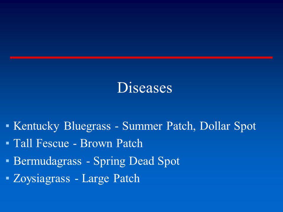 Diseases Kentucky Bluegrass - Summer Patch, Dollar Spot Tall Fescue - Brown Patch Bermudagrass - Spring Dead Spot Zoysiagrass - Large Patch