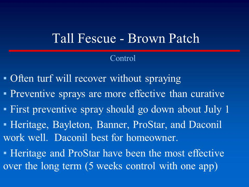 Tall Fescue - Brown Patch Control Often turf will recover without spraying Preventive sprays are more effective than curative First preventive spray s