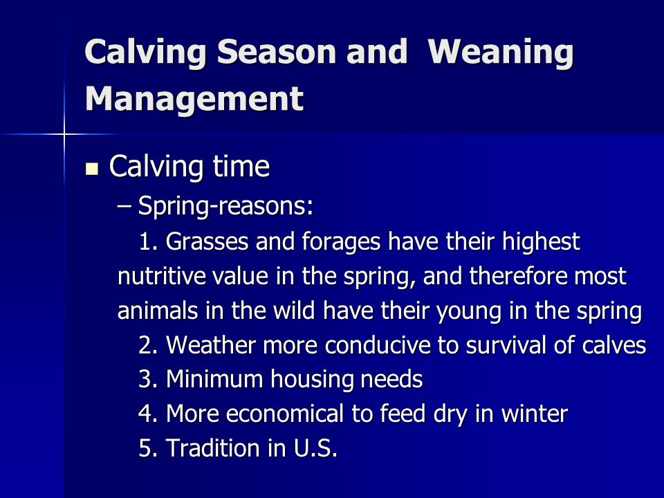 Calving Season and Weaning Management Calving time Calving time –Spring-reasons: 1.