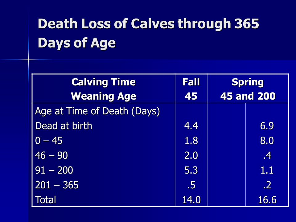 Death Loss of Calves through 365 Days of Age Calving Time Weaning Age Fall45Spring 45 and 200 Age at Time of Death (Days) Dead at birth 4.46.9 0 – 45 1.88.0 46 – 90 2.0.4 91 – 200 5.31.1 201 – 365.5.2 Total14.016.6