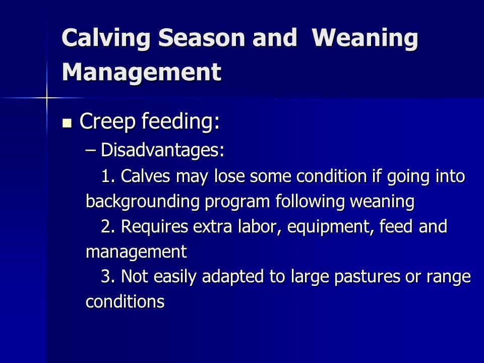 Calving Season and Weaning Management Creep feeding: Creep feeding: –Disadvantages: 1.