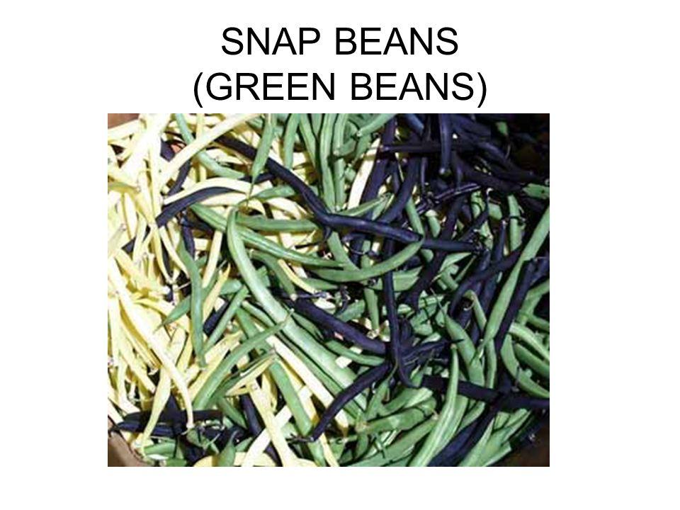 SNAP BEANS (GREEN BEANS)