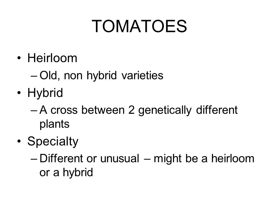 TOMATOES Heirloom –Old, non hybrid varieties Hybrid –A cross between 2 genetically different plants Specialty –Different or unusual – might be a heirloom or a hybrid