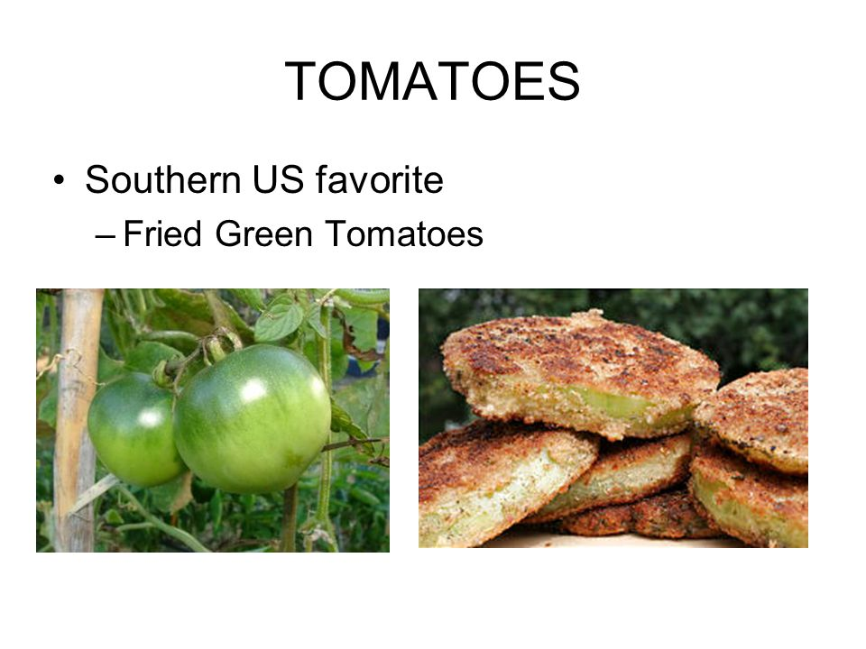 TOMATOES Southern US favorite –Fried Green Tomatoes