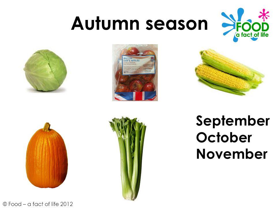 © Food – a fact of life 2012 September October November Autumn season