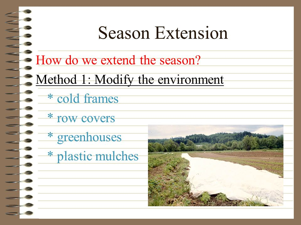 Season extension is a way to extend cash to the farm business operation over a longer period of time.