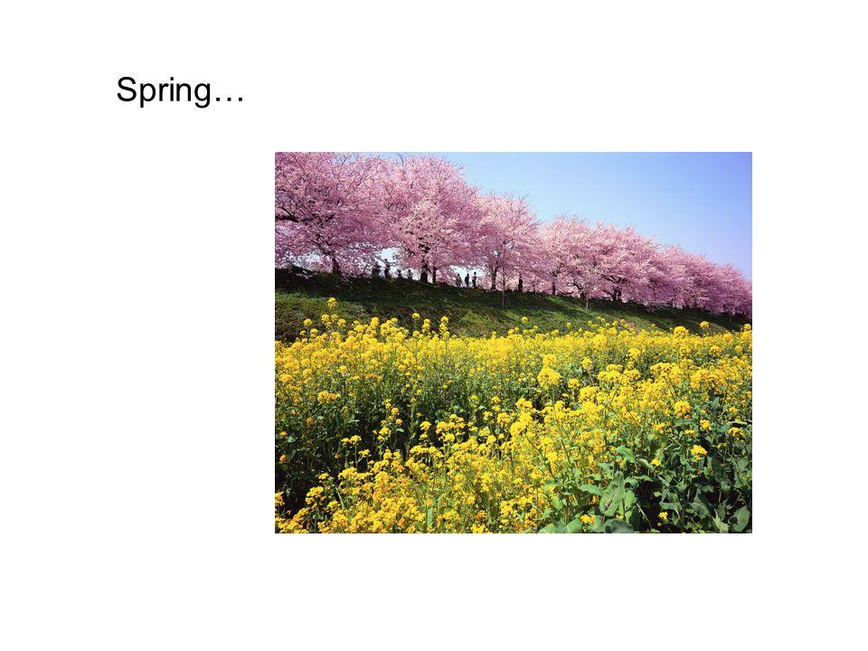 Spring…