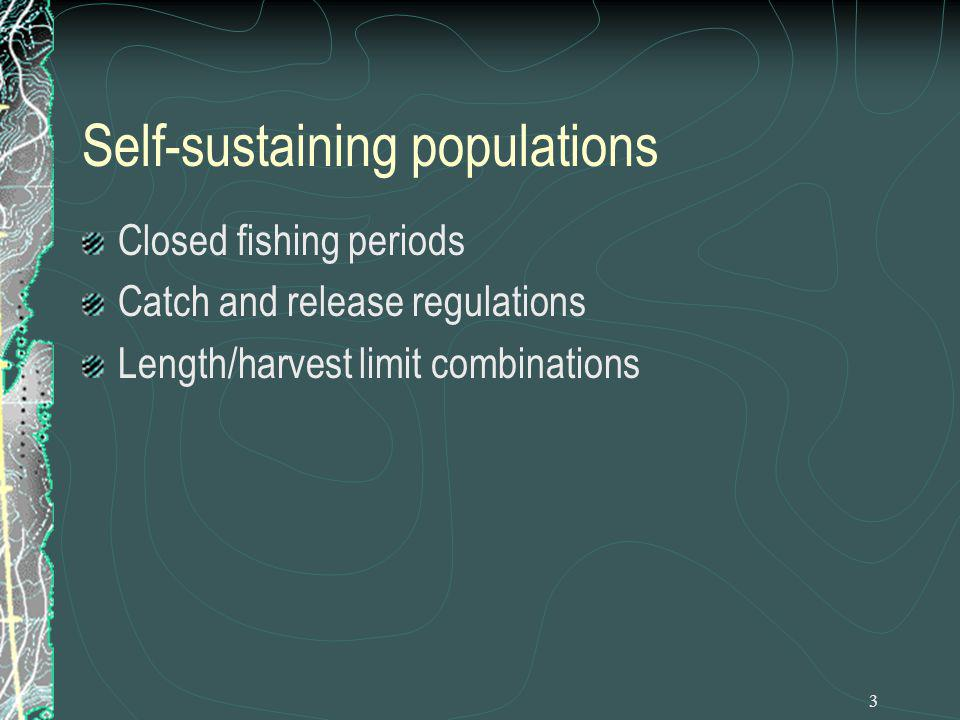14 Further Studies Relationships between numbers of adults and size of year class Measuring if/how angling for nesting bass impacts recruitment