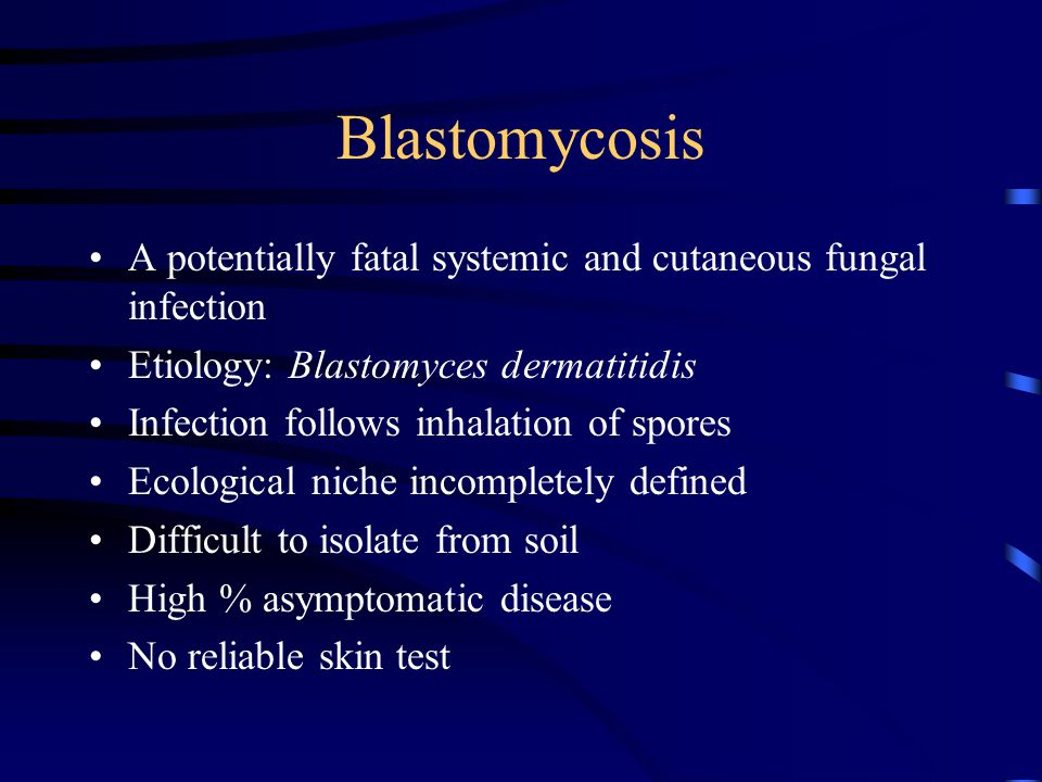 Blastomycosis A potentially fatal systemic and cutaneous fungal infection Etiology: Blastomyces dermatitidis Infection follows inhalation of spores Ecological niche incompletely defined Difficult to isolate from soil High % asymptomatic disease No reliable skin test