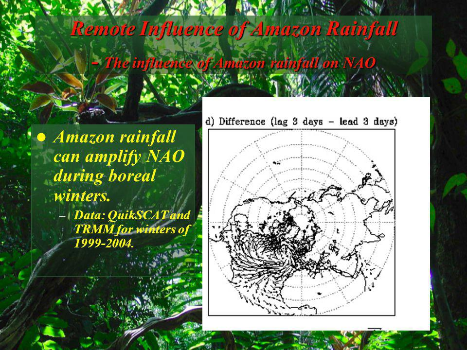 Remote Influence of Amazon Rainfall - The influence of Amazon rainfall on NAO Amazon rainfall can amplify NAO during boreal winters.