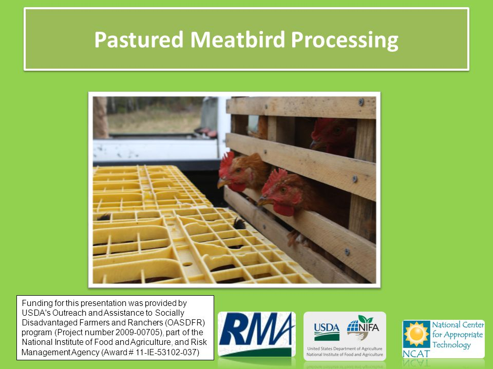 Pastured Meatbird Processing Funding for this presentation was provided by USDA s Outreach and Assistance to Socially Disadvantaged Farmers and Ranchers (OASDFR) program (Project number 2009-00705), part of the National Institute of Food and Agriculture, and Risk Management Agency (Award # 11-IE-53102-037)