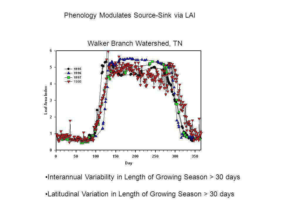 Data of Pilegaard et al. Soil Temperature: An Objective Indicator of Phenology??