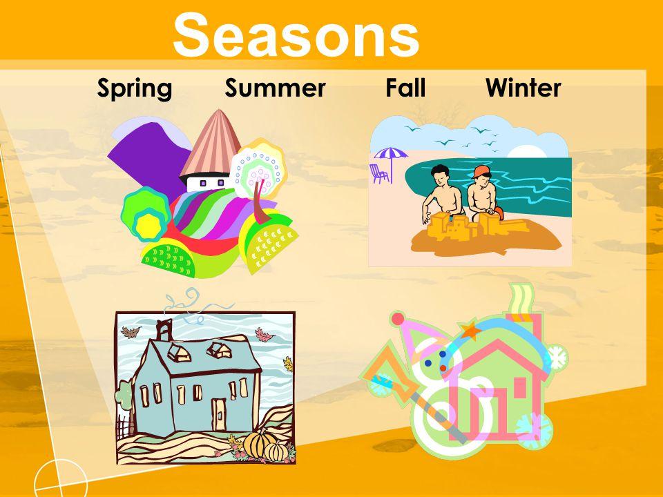 Seasons Spring Summer Fall Winter