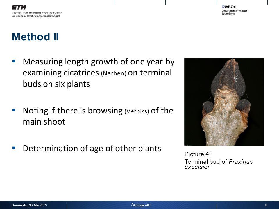 Method II Documentation: One mark per plant and year
