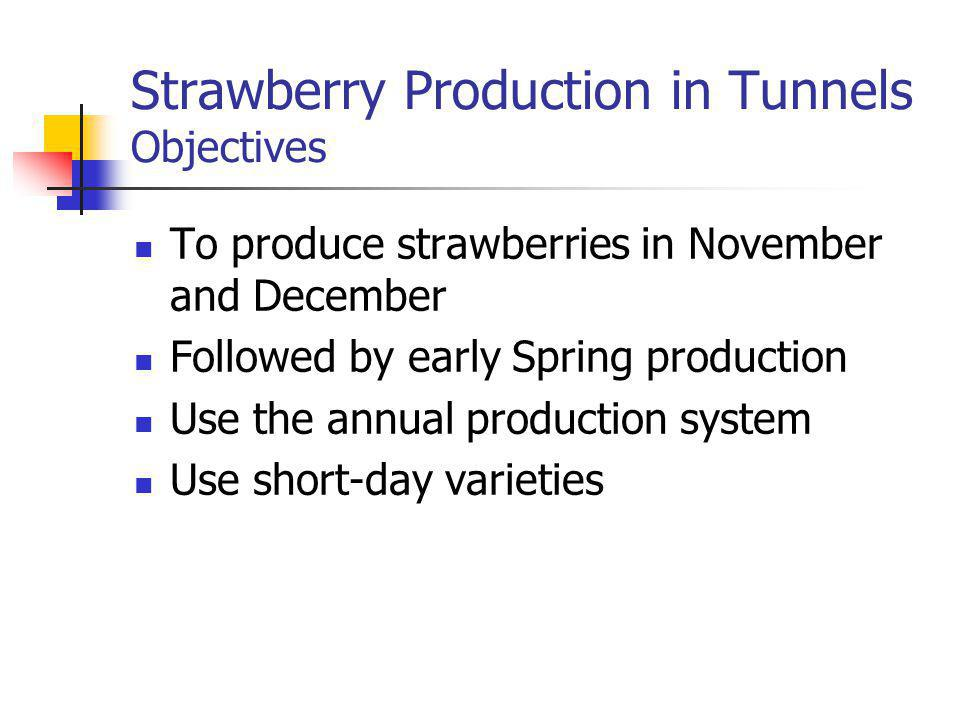Strawberry Production in Tunnels Objectives To produce strawberries in November and December Followed by early Spring production Use the annual production system Use short-day varieties