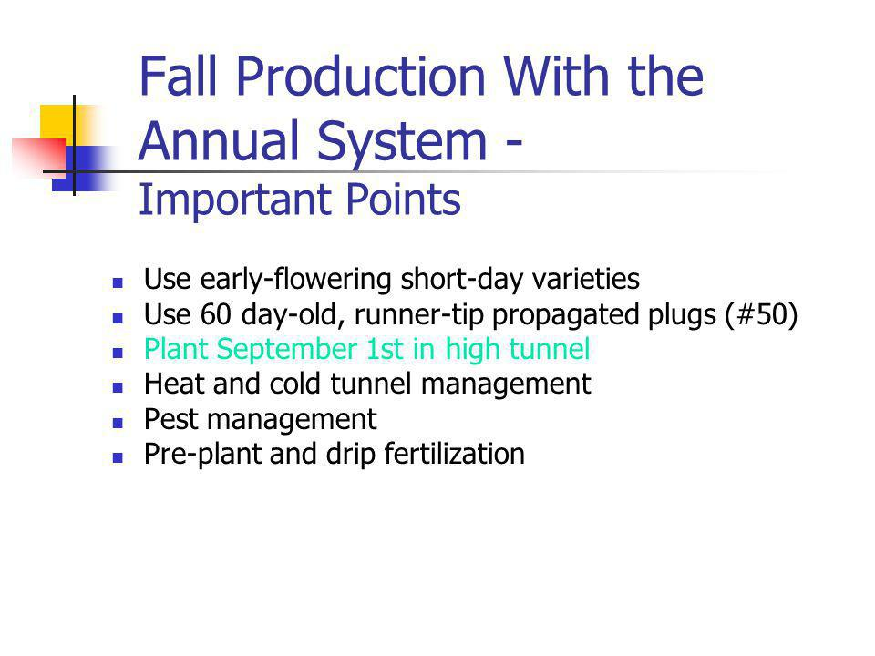Fall Production With the Annual System - Important Points Use early-flowering short-day varieties Use 60 day-old, runner-tip propagated plugs (#50) Plant September 1st in high tunnel Heat and cold tunnel management Pest management Pre-plant and drip fertilization
