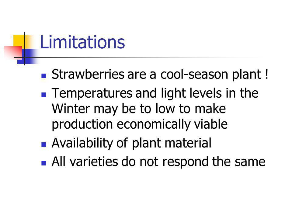 Limitations Strawberries are a cool-season plant .