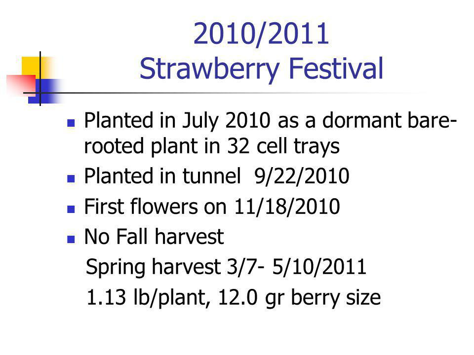 2010/2011 Strawberry Festival Planted in July 2010 as a dormant bare- rooted plant in 32 cell trays Planted in tunnel 9/22/2010 First flowers on 11/18/2010 No Fall harvest Spring harvest 3/7- 5/10/2011 1.13 lb/plant, 12.0 gr berry size