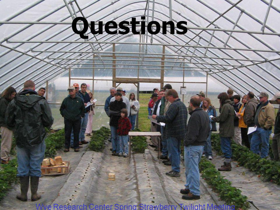Wye Research Center Spring Strawberry Twilight Meeting Questions