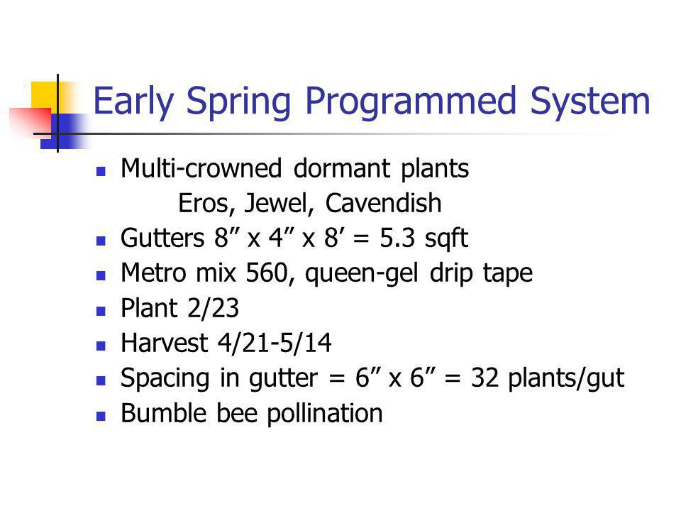 Early Spring Programmed System Multi-crowned dormant plants Eros, Jewel, Cavendish Gutters 8 x 4 x 8 = 5.3 sqft Metro mix 560, queen-gel drip tape Plant 2/23 Harvest 4/21-5/14 Spacing in gutter = 6 x 6 = 32 plants/gut Bumble bee pollination