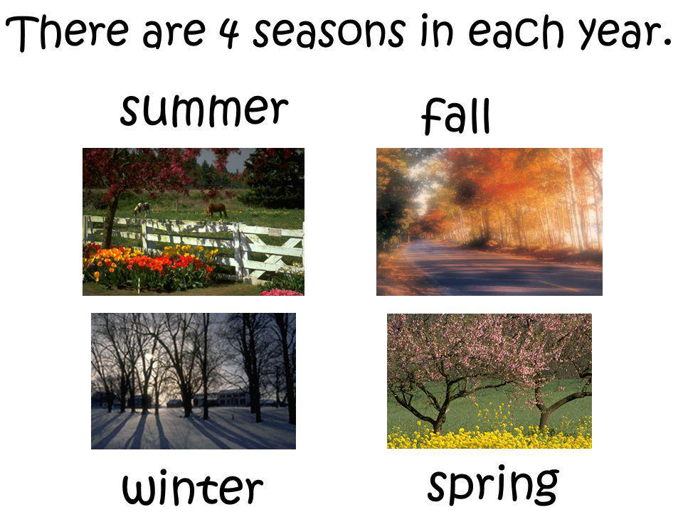 There are 4 seasons in each year. winter summer fall spring