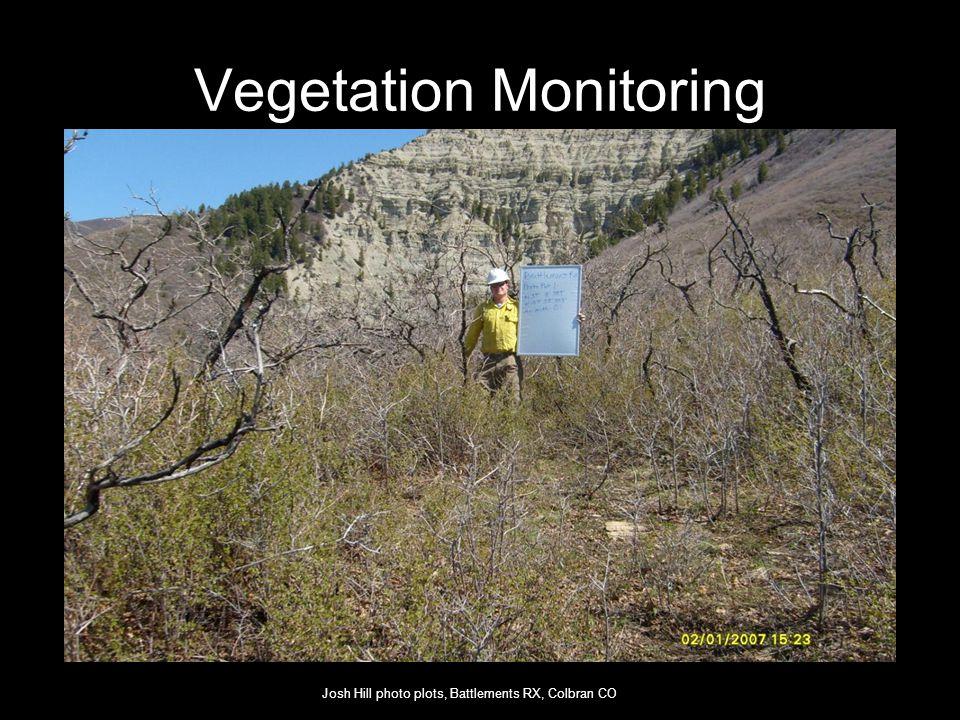 Vegetation Monitoring Josh Hill photo plots, Battlements RX, Colbran CO