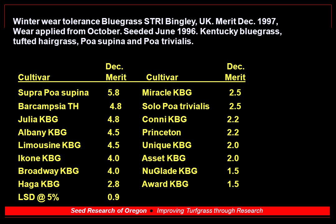 Seed Research of Oregon Improving Turfgrass through Research Winter wear tolerance Bluegrass STRI Bingley, UK.
