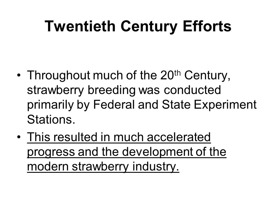 Twentieth Century Efforts Throughout much of the 20 th Century, strawberry breeding was conducted primarily by Federal and State Experiment Stations.
