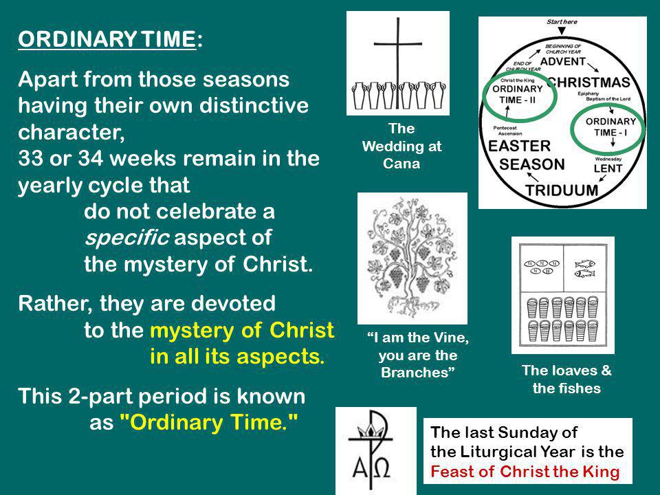 ORDINARY TIME: Apart from those seasons having their own distinctive character, 33 or 34 weeks remain in the yearly cycle that do not celebrate a spec