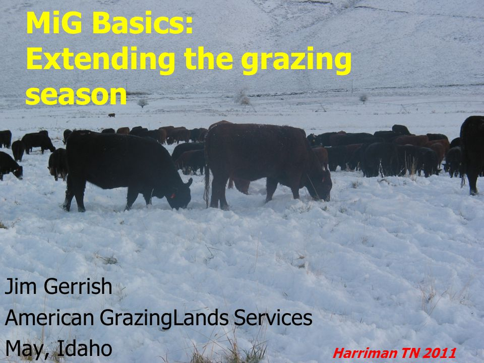 MiG Basics: Extending the grazing season Jim Gerrish American GrazingLands Services May, Idaho Harriman TN 2011