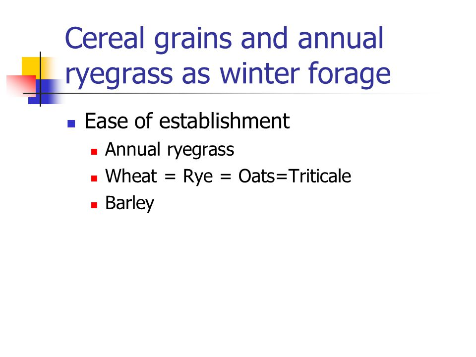 Ease of establishment Annual ryegrass Wheat = Rye = Oats=Triticale Barley Cereal grains and annual ryegrass as winter forage