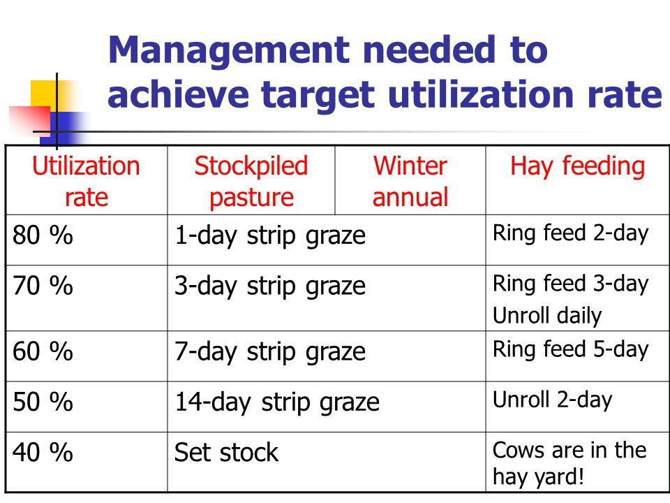 Management needed to achieve target utilization rate Utilization rate Stockpiled pasture Winter annual Hay feeding 80 %1-day strip graze Ring feed 2-day 70 %3-day strip graze Ring feed 3-day Unroll daily 60 %7-day strip graze Ring feed 5-day 50 %14-day strip graze Unroll 2-day 40 %Set stock Cows are in the hay yard!