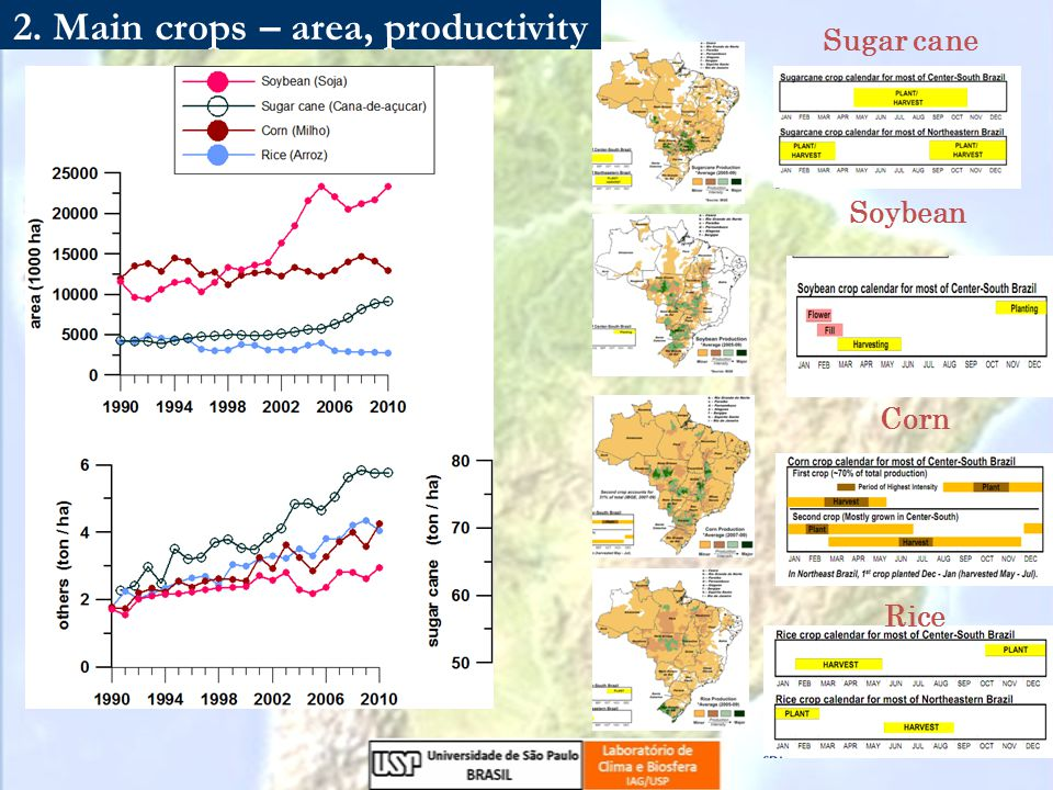 Sugar cane Soybean Corn Rice 2. Main crops – area, productivity