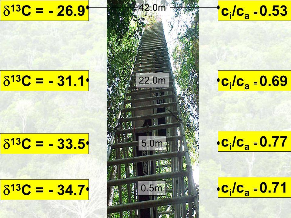 c i /c a = 0.71 13 C = - 34.7 0.5m c i /c a = 0.77 13 C = - 33.5 5.0m c i /c a = 0.69 13 C = - 31.1 22.0m c i /c a = 0.53 13 C = - 26.9 42.0m